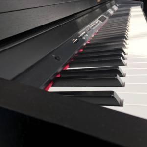 Piano nord location